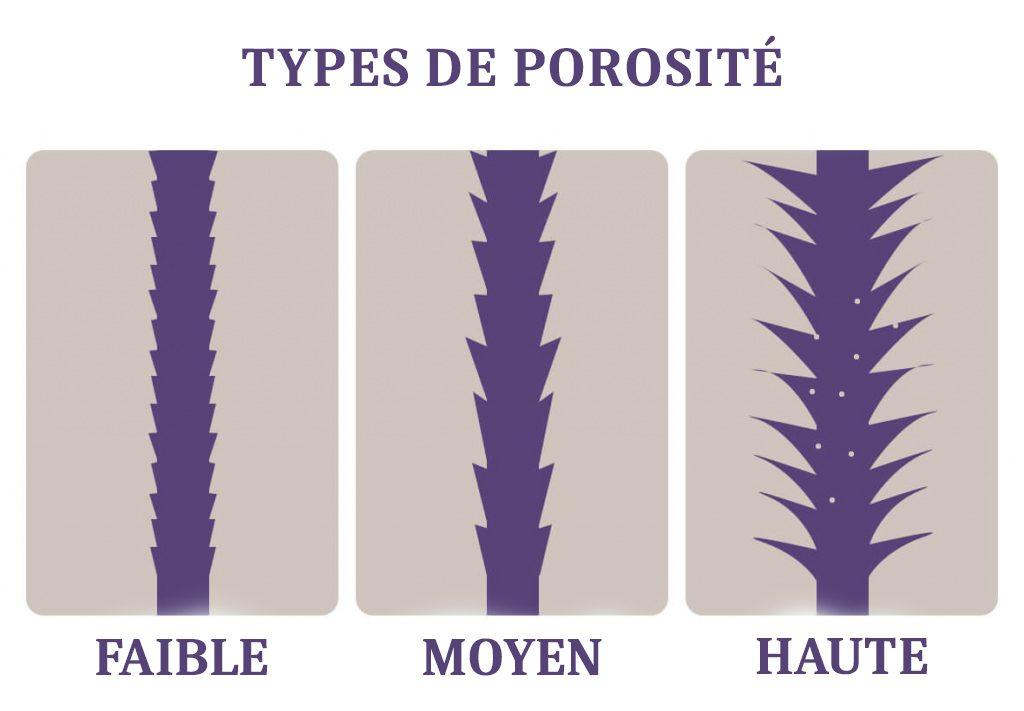 types de porosité des cheveux